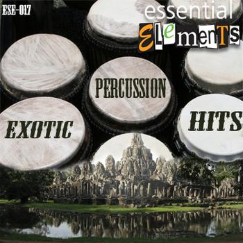 Exotic Percussion Hits