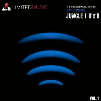 JUNGLE | DRUM'N'BASS 1