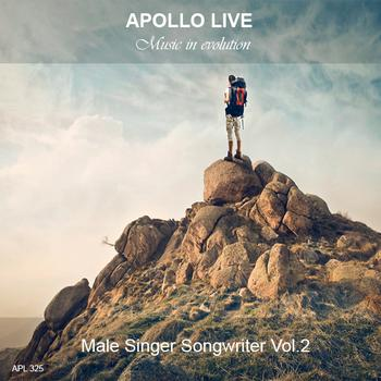 MALE SINGER SONGWRITER VOL.7