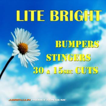 Lite Bright Bumpers