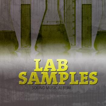 Sound Music Album 51 - Lap Samples