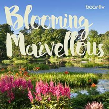 BoostTV 016 Blooming Marvellous