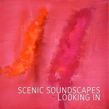 MAM030 Scenic Soundscapes - Looking In