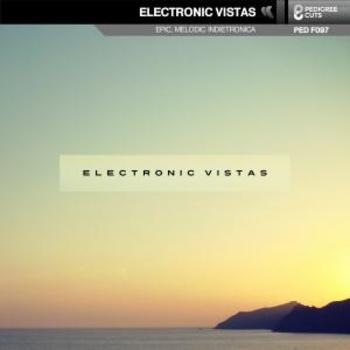 Electronic Vistas