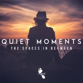Quiet Moments - The Spaces In Between