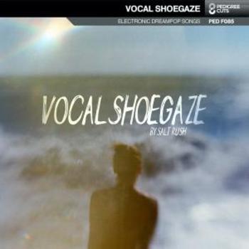 Vocal Shoegaze