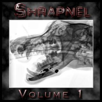 Heavy Metal Shrapnel Volume 1