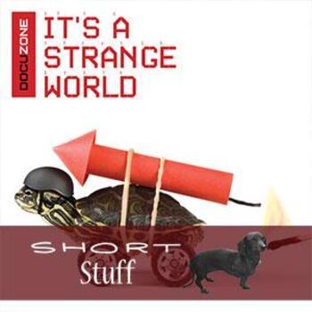 ZONE 025(SS) It's A Strange World Short Stuff