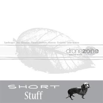 ZONE 003(SS) Natural World Short Stuff