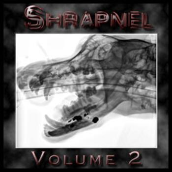 Heavy Metal Shrapnel Volume 2