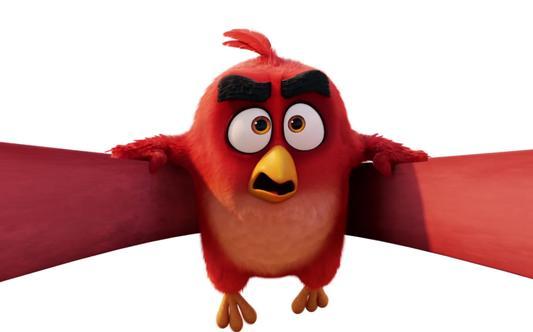"""Parizaki Nikas """"Angry Birds"""""""