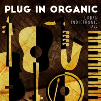 Plug In Organic