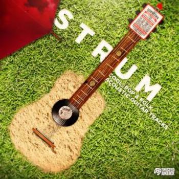 TJ0108 Strum
