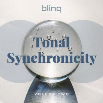 blinq 066 Tonal Synchronicity vol.2