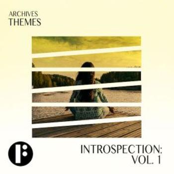 Introspection Vol 1