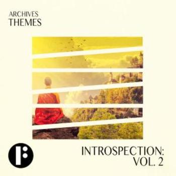 Introspection Vol 2