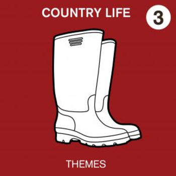 Country Life Volume 3