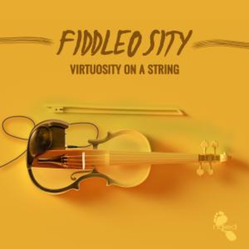 Fiddlosity - Viruosity On A String