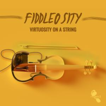 Fiddlosity - Viruosity On A String
