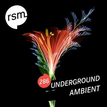 RSM286 Underground Ambient