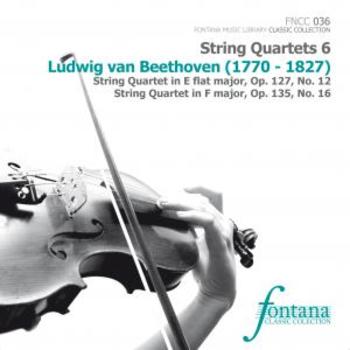 Ludwig van Beethoven - String Quartets 6