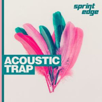 Acoustic Trap
