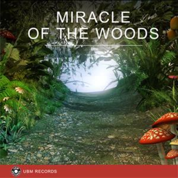 UBM2317 Miracle of the Woods