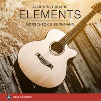 UBM2313 Elements - Acoustic Guitars