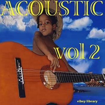 VIBEY 49 Acoustic 2