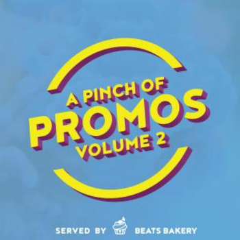 A Pinch Of Promos Volume 2