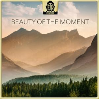 Beauty Of The Moment