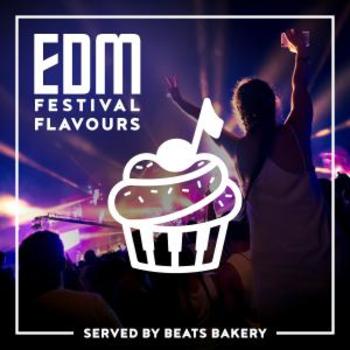 EDM Festival Flavours