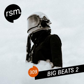 RSM309 Big Beats 2