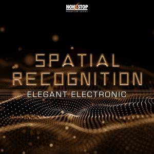 Spatial Recognition