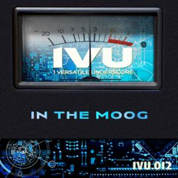 In The Moog