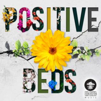 Positive Beds