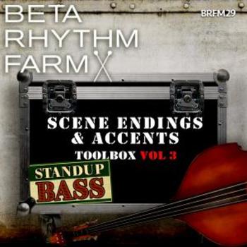 BRFM029 - Scene Endings & Accents Toolbox Vol 3 Standup Bass