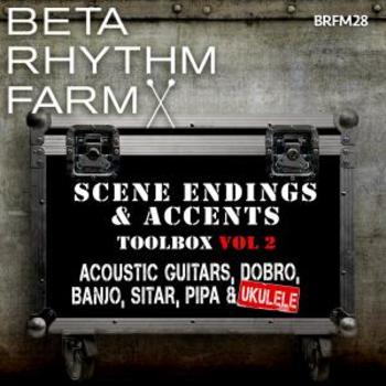BRFM028 - Scene Endings & Accents Toolbox Vol 2 Acoustic Guitars, Dobro, Banjo, Sitar, Pipa & Ukulele BRFM28
