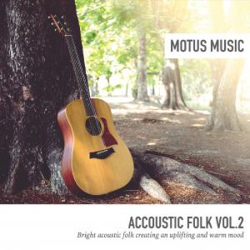 Acoustic Folk Vol.2