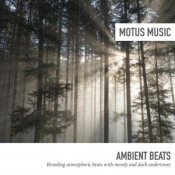 Ambient Beats