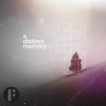 A Distinct Memory