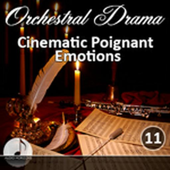 Orchestral 11 Cinematic Poignant Emotions