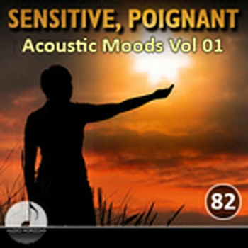 Sensitive Poignant 82 Acoustic Moods Vol 01