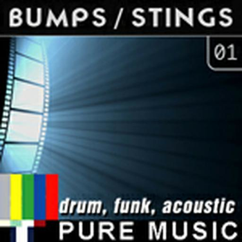 Bumps Stings (Drum_Funk_Acoustic) 01
