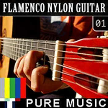 Flamenco Nylon Guitar 01