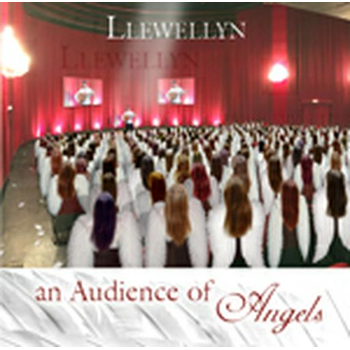 An Audience Of Angels