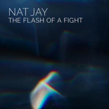 - The Flash Of A Fight