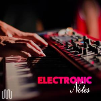 ELECTRONIC NOTES
