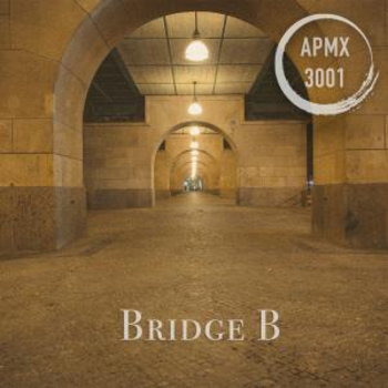 Bridge B (Hip-Hop/Rap)
