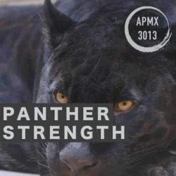 Panther Strength (Alternative Hip-Hop/Rap)